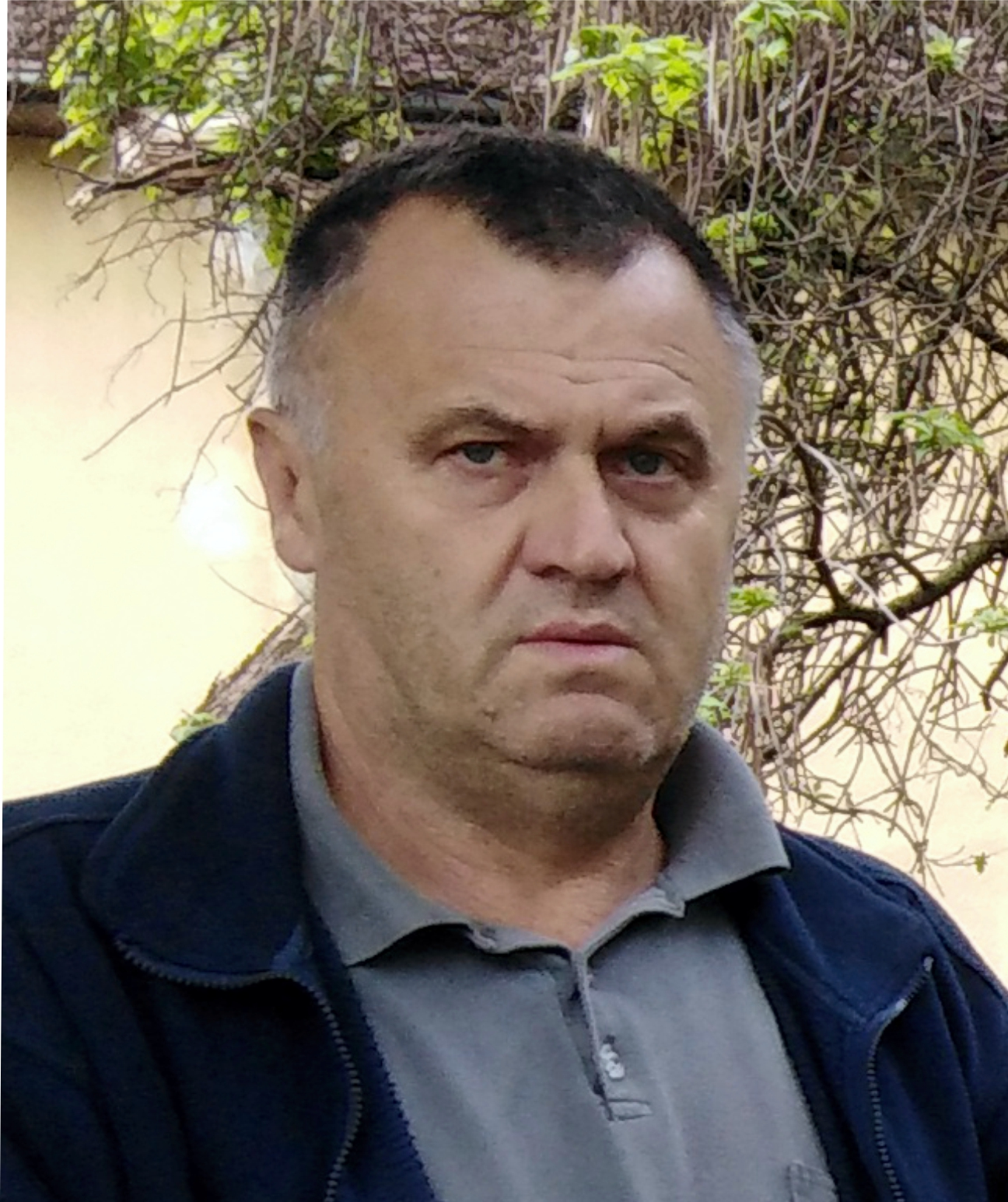 Верољуб Бабић